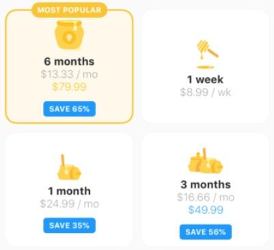 Tabla de precios de suscripción de la aplicación.